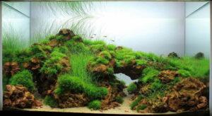 Акваскейп Nature Style 9