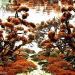 Дизайн аквариума 16