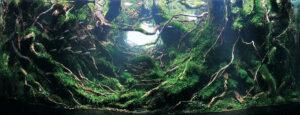 Акваскейп Nature Style 4