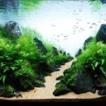 Дизайн аквариума 121