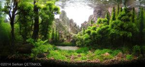 Акваскейп Nature Style 12