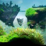 Дизайн аквариума 054
