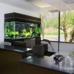 Аквариум в интерьере офиса 012