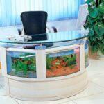 Рабочий стол — аквариум